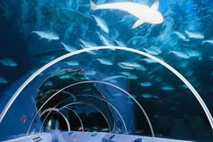 青岛旅游 青岛海底世界优惠门票