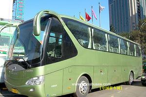 敦煌旅游包车——19座金龙,33座,45座旅游车
