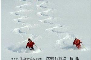 平谷渔阳绿色生态滑雪、郁金香魔锐水世界休闲年会两日游