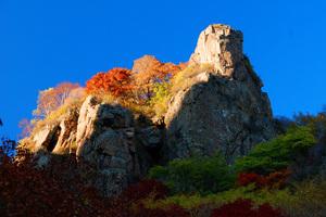 隆化茅荆坝国家森林公园