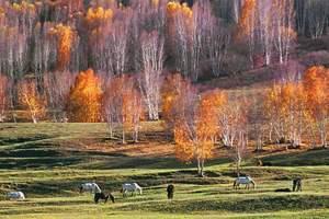 塞罕坝国家森林公园乌兰布统草原导游服务200元