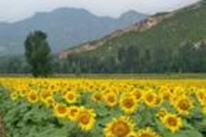 龙庆峡会议旅游,企业年会服务策划、野鸭湖旅游滴水湖会议拓展