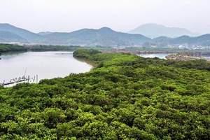 ◇北海金海湾红树林+捕鱼赶海-景区介绍