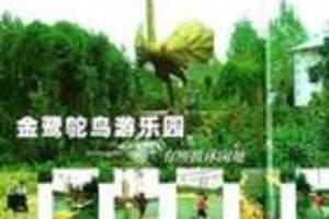 郑州郊区景点门票,金鹭鸵鸟园景区门票价格
