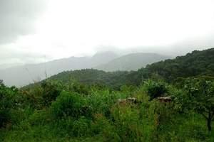 海南霸王岭自然保护区