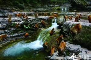 山西蟒河生态旅游区特价自由行门票