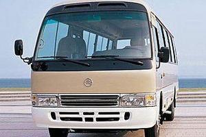 春节包车去自贡看灯会_春节旅游去哪里包车价格是多少