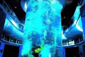 到青岛一定要玩海底世界|青岛海底世界团购特价票y
