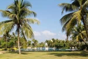 三亚四日度假游,住四星酒店,游览南山寺、天堂公园、猴岛澜海游