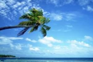 海南三亚浪漫六日游,三亚自由行+跟团六天游,海南旅游酒店攻略