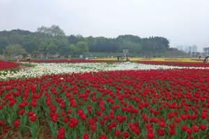 【长沙植物园花花世界亲子教育基地】春天有个约会亲子拓展一日价