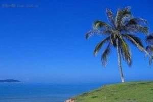 三亚自由行+跟团六天游,海南尊贵六日游酒店预订,三亚景点攻略