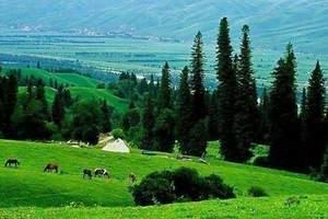 南山牧场旅游攻略,长沙到南山牧场两日游,长沙到南山牧场有多远