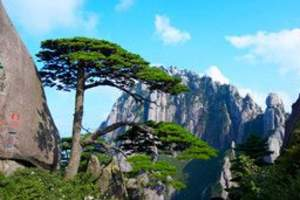扬州到黄山畅销旅游线路_黄山、芙蓉谷、宏村、阿菊秀四星三日游