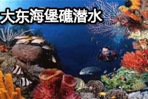 海南三亚大东海旅游_大东海堡礁潜水门票预定