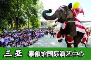 海南三亚泰象馆国际演艺中心 旅游景点门票 泰国神象