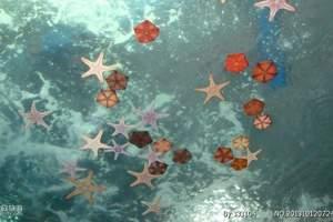 唐山到天津海昌极地海洋馆一日游