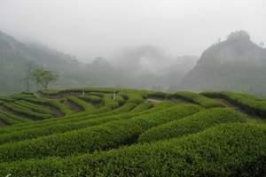 南昌到武夷山双高二日游 中国十大名山,世界自然景点 品大红袍