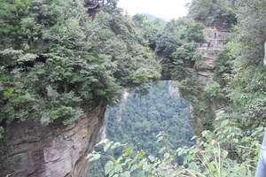 南昌到长沙-张家界大峡谷-玻璃栈道-凤凰古城 双座纯玩4日游