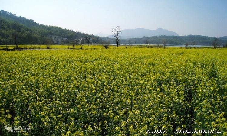 宝鸡周边二日游 宝鸡到汉中油菜花、红寺湖、诸葛古镇休闲二日游