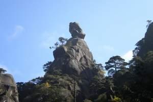 九江出发到三清山 婺源 景德镇三日游[四星标准]油菜花开了