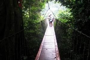 亚龙湾森林公园