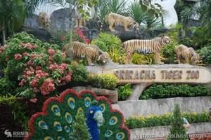 《北京到泰新马旅游价格》到泰新马旅游攻略,到泰国旅游10日游
