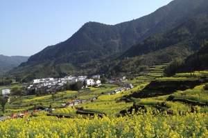 南京到高淳旅游_南京到国际慢城—桠溪生态风光带、高淳老街一日