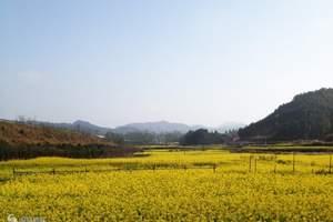 泉州到漳州 闽南第一碑林云洞岩、长泰漂流汽车一日游