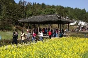 郑州出发到江西婺源、千岛湖双卧五日游