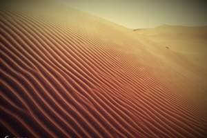 到内蒙古草原旅游:内蒙古草原蒙古包、库布齐沙漠、博物院三日游