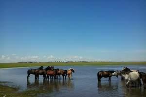 青岛到呼伦贝尔大草原、满洲里口岸、 额尔古纳、室韦五日游