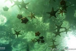 大连圣亚海洋世界一日游[圣亚海洋世界门票套票]圣亚海洋团购价