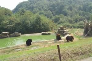 杭州亲子游 杭州野生动物园亲子一日游