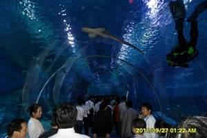 东莞出发深圳海洋世界、极地馆、海洋文化主题演艺一天