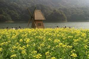 东莞到三水森林公园、南丹山、万寿宫祈福一日游_佛山三水一天团