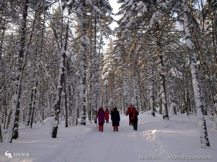 哈尔滨-东升穿越-雪乡-镜泊湖-长白山-吉林-雾凇岛7天6晚