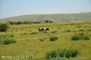 大连去呼伦贝尔草原、恩和、额尔古纳湿地、满州里纯玩双卧5日游