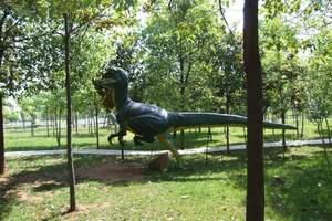 世界第九大奇迹---南阳西峡恐龙遗迹园汽车一日游