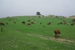 7月到内蒙希拉穆仁草原、库布其沙漠、成吉思汗陵新区双卧六日游