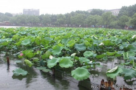 <杭州二日>【经典系列】黄龙洞-宋城-钱江新景-西湖游船-