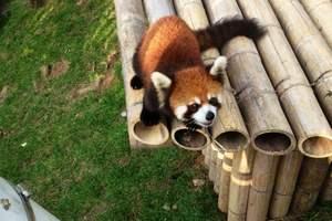 大连森林动物园电子票_森林动物园优惠门票团购