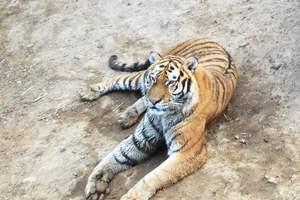 哈尔滨动物园一日游-哈尔滨动物园旅游价格-哈尔滨动物园怎么走