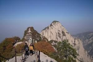 太原到西安的旅游团【西安周边完美五日游】西安推荐旅游线路