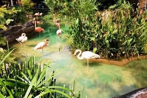 2017年亲子游好去处 广州出发到顺德长鹿农庄一天游