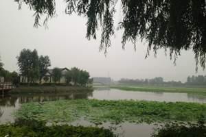 夏季旅游 北京周边到白洋淀 划龙舟  汽车 特价游二日游