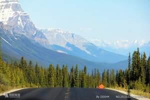 红宝石公主号 阿拉斯加美洲邮轮航线 加拿大公园、冰河湾13日