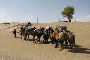 喀什旅游周边2日游,达瓦昆沙漠+喀什古城民族风情二日游