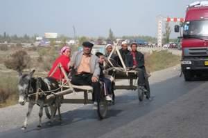 乌鲁木齐到喀什卡拉库里湖、喀什民俗风情二日游 新疆喀什游