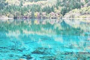杭州出发德清下渚湖一日游(国家级湿地公园)独立成团